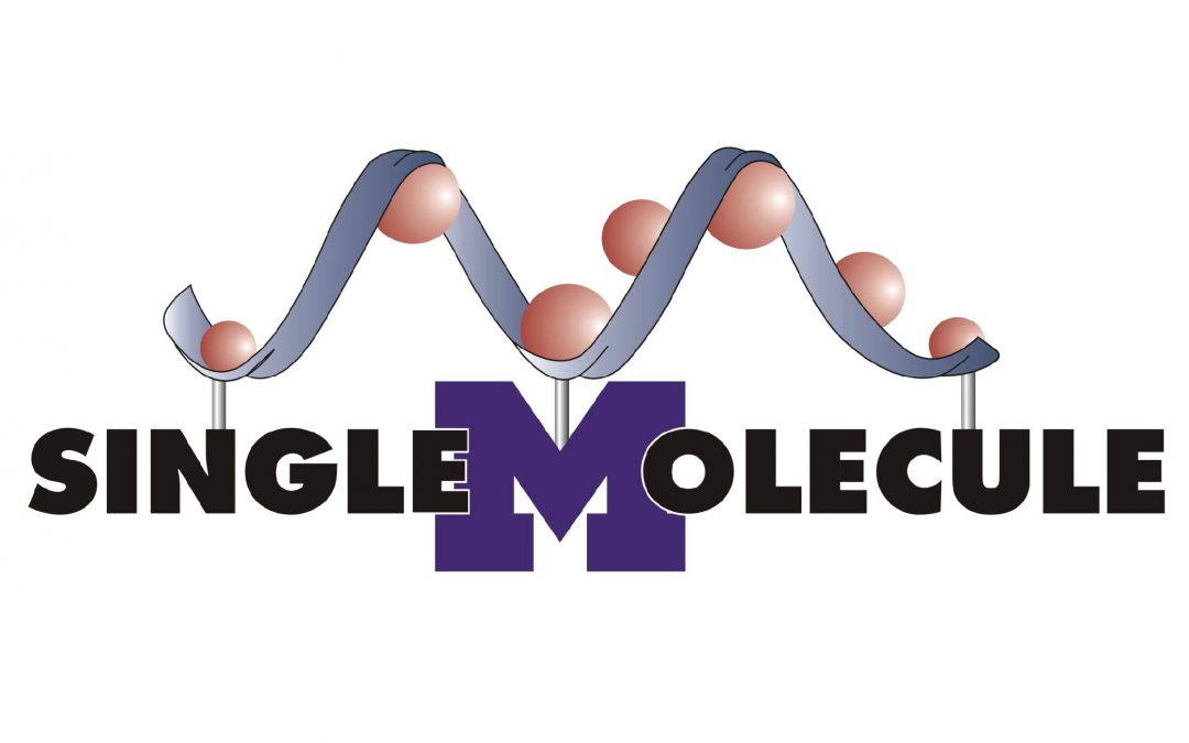 Single Molecule Analysis in Real-Time Center