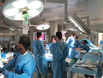 Animal Surgery Operating Rooms (ASOR)